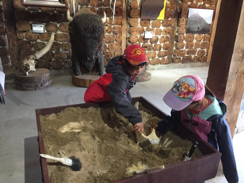 Terre des bisons discovery center family activity